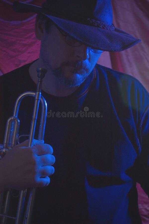 De musicus van blauw   stock afbeeldingen
