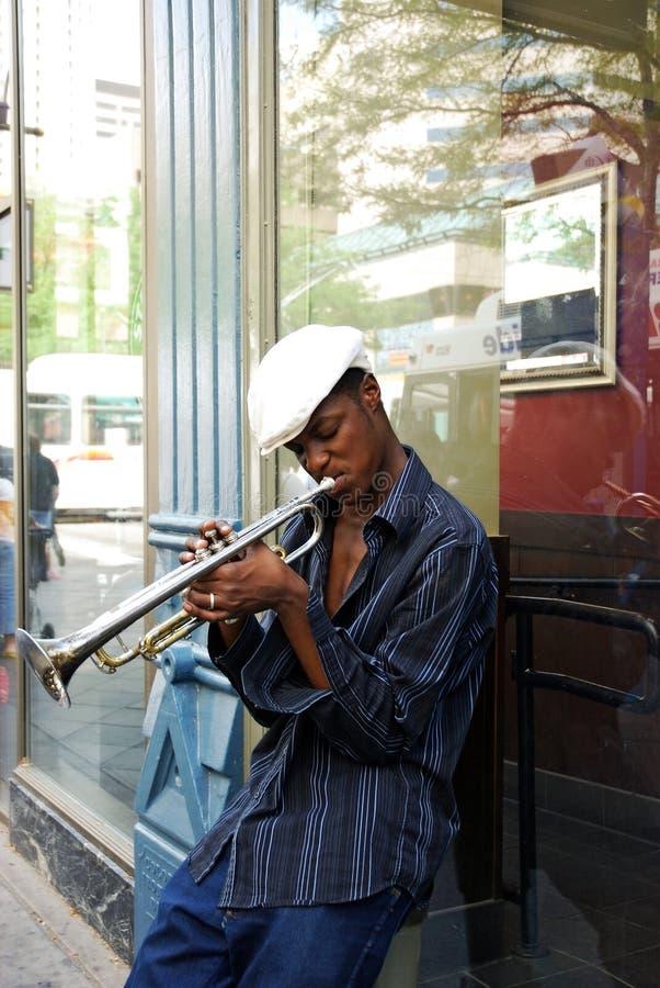 De musicus van de straat royalty-vrije stock afbeelding