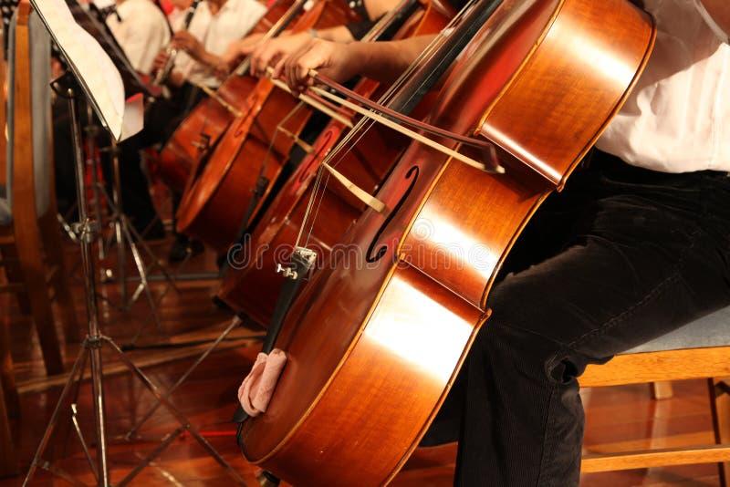 De musicus van de violoncel royalty-vrije stock fotografie