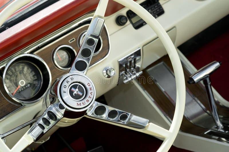 De Mustang van de doorwaadbare plaats royalty-vrije stock foto's