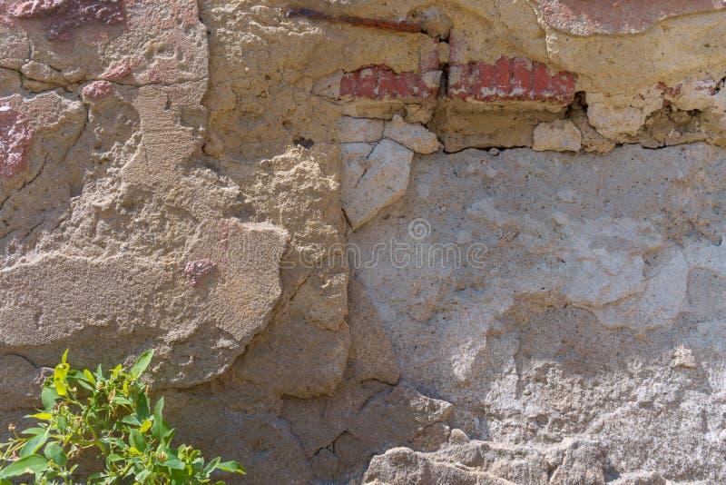 De muur van de baksteenstad met het vallen van grijs pleister Vernietigd en rottend onder de invloed van tijd en weer stock afbeelding