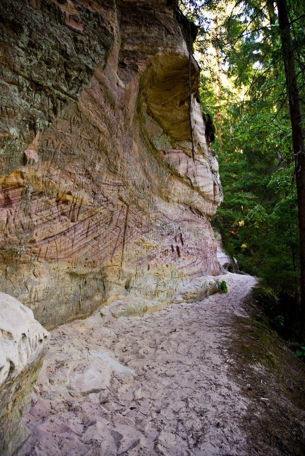 De muur van de rots in het hout royalty-vrije stock afbeelding