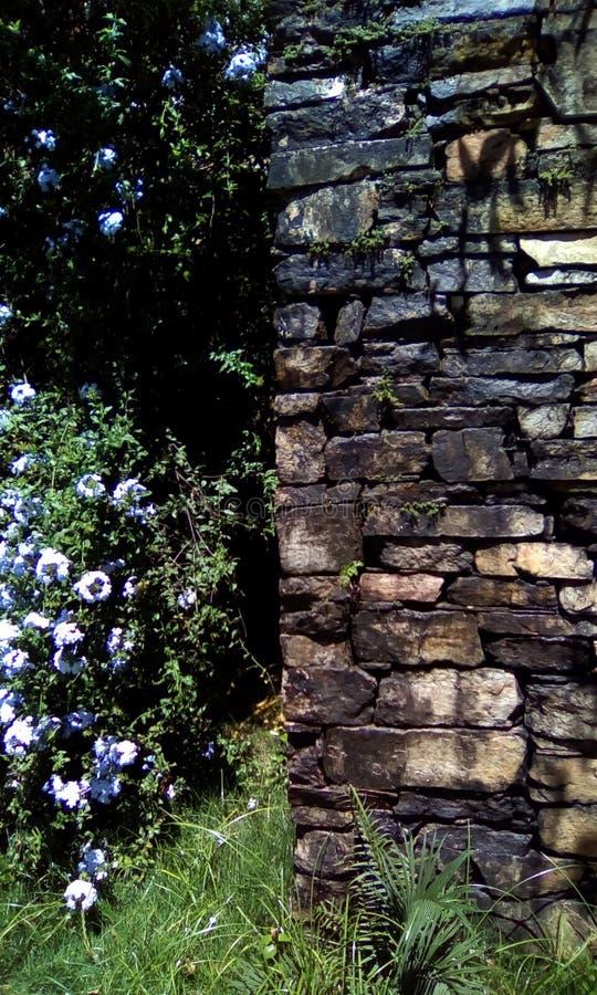 De muur van de eeuwsteen van de koloniale periode stock foto's