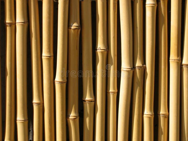 De muur van het bamboe royalty-vrije stock fotografie