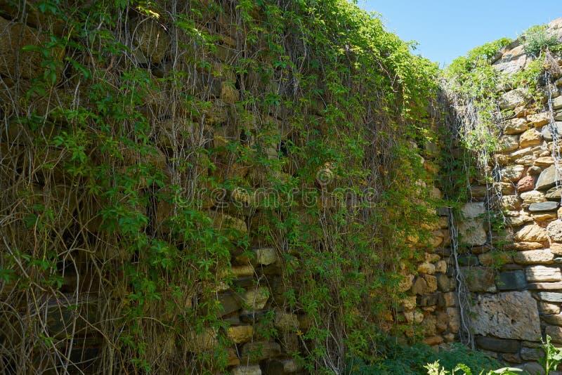De muur van de Histriavesting door Griekse kolonisten 656 V.CHR. wordt opgericht die stock fotografie