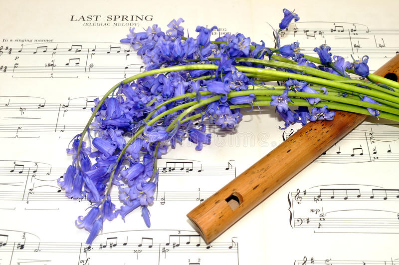De Muziek en het Klokjebloemen van het de lenteblad royalty-vrije stock afbeelding