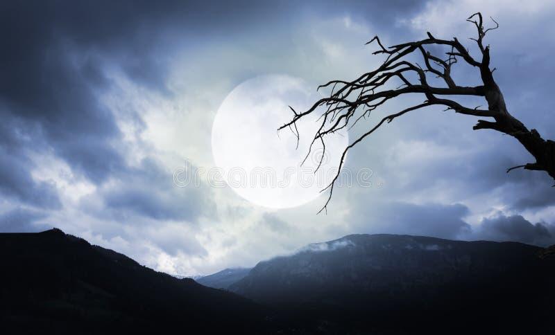 De muziek van de nacht Griezelige bergen en boom met volle maan stock afbeeldingen