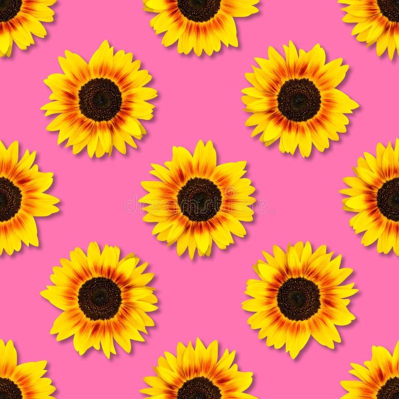 De naadloze achtergrond van de zonnebloem Heldere gele zonnebloemen op blauwe achtergrond Bloemen patroon royalty-vrije stock foto's