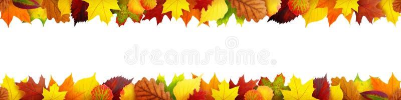 De naadloze banner van de herfstbladeren stock foto's
