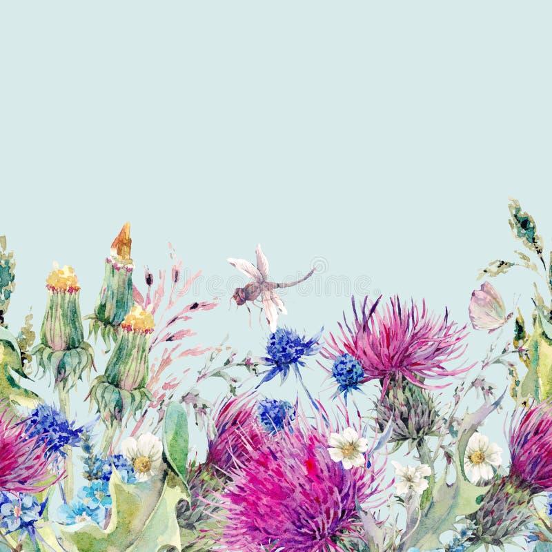 De naadloze bloemengrens van de de zomerwaterverf met wilde bloemen vector illustratie