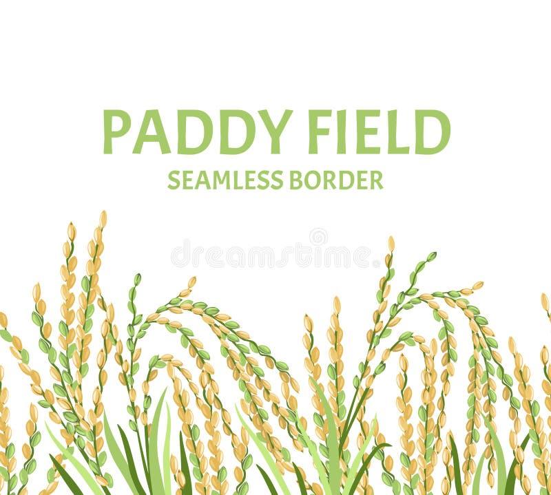 De naadloze grens van het padiegebied Vectorillustratie van oren van rijst royalty-vrije illustratie