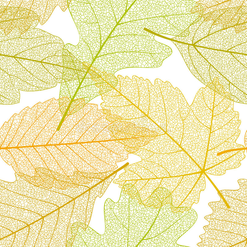 De naadloze herfst verlaat patroon vector illustratie