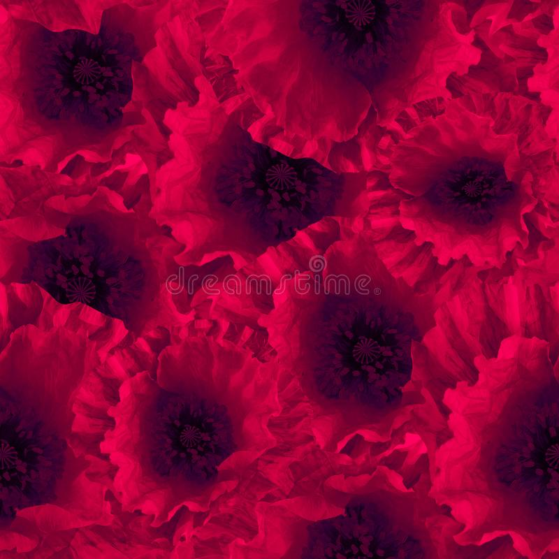 De naadloze rode papaver bloeit papavers bloemenpatroon stock illustratie