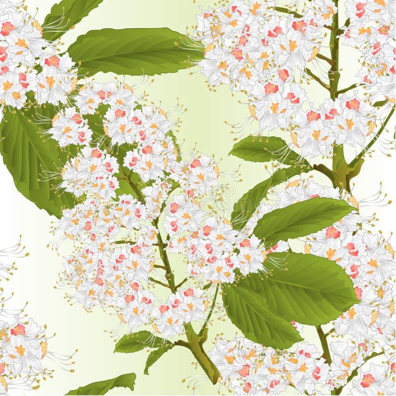 De naadloze textuurbloemen met de boom van de bladerenkastanje springen uitstekende vector editable illustratie als achtergrond o royalty-vrije illustratie