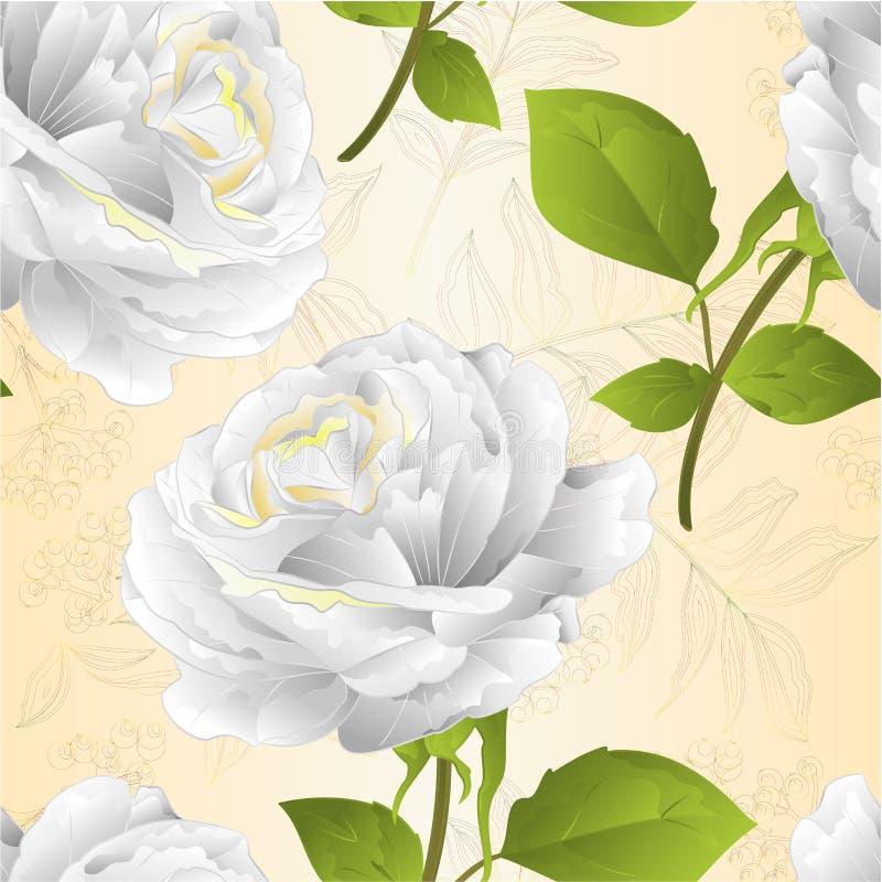 De naadloze witte textuurbloem nam op een wit takje als achtergrond met editable toe bladeren uitstekende vectorillustratie stock illustratie