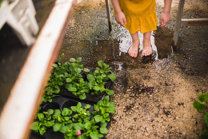 De naakte voeten van het meisje in een vulklei stock foto's