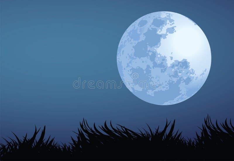De nacht van de volle maan vector illustratie