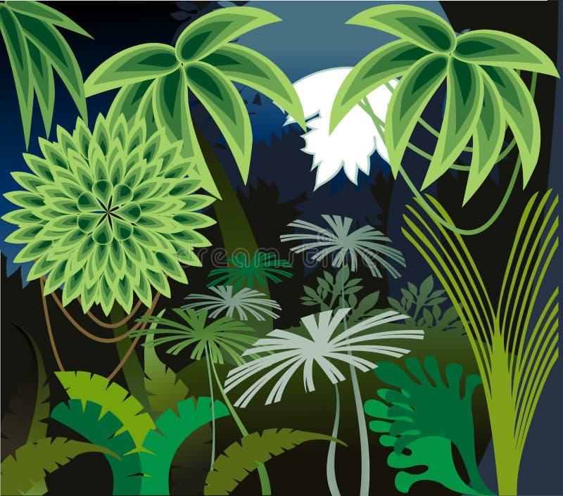 De nacht van het regenwoud stock illustratie