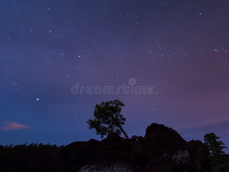 De Nacht van Tenerife royalty-vrije stock fotografie