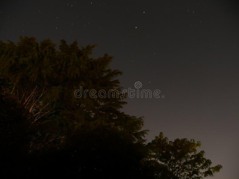 De nacht van de zomer royalty-vrije stock foto