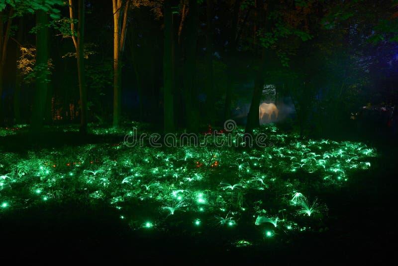De nachtlichten tonen `-Inspiratie ` in Ostankino-het park van de tuinstad Honderden lichten in het bos die 3d lichte laser verba stock foto