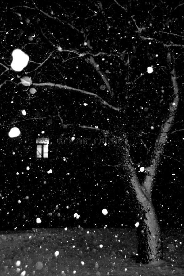 De nachtscène van de winter royalty-vrije stock foto