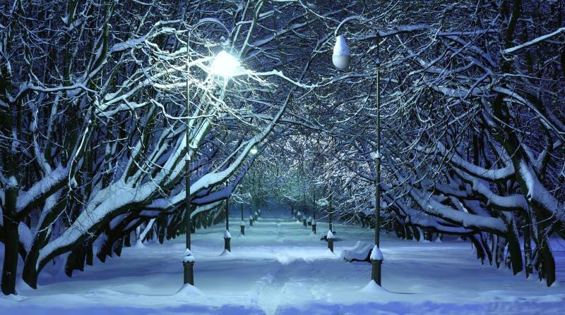 De nachtscène van het de winterpark royalty-vrije stock afbeelding