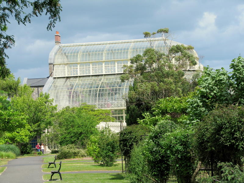 De nationella botaniska trädgårdarna av Dublin royaltyfria foton