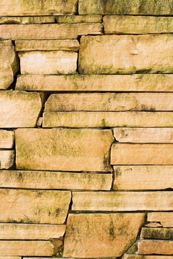 De natte Muur van de Rots royalty-vrije stock foto