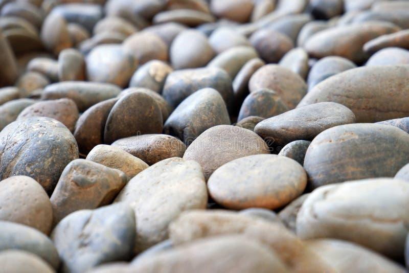 De de natuurlijke Gang/Weg van de Kiezelsteensteen royalty-vrije stock afbeeldingen