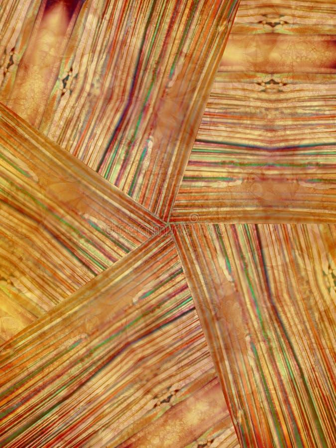 Natuurlijke Houten Korreltextuur Stock Afbeelding
