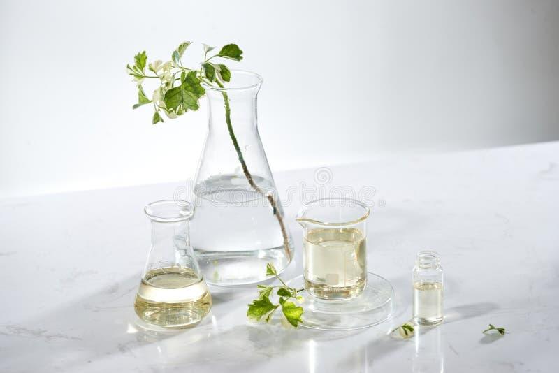 De natuurlijke kosmetische skincareserum verpakking met blad, huis maakte olie en het ingrediënt van de schoonheidsvitamine biolo stock foto