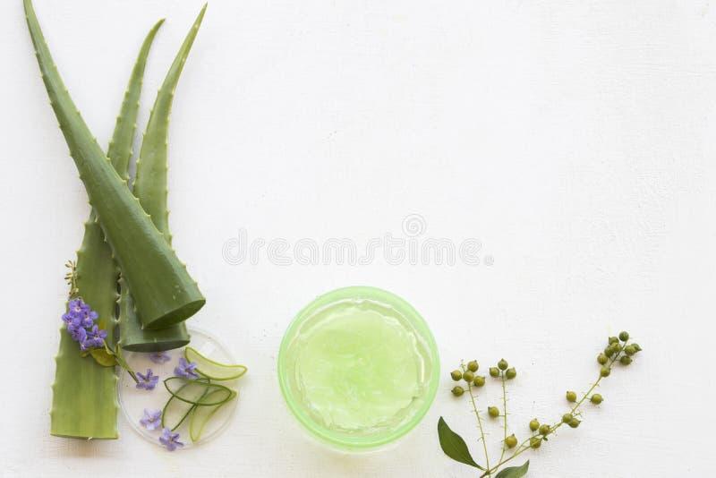 De natuurlijke kruiden kalmerende gezondheidszorg van Vera van het gelaloë voor huidgezicht stock foto's