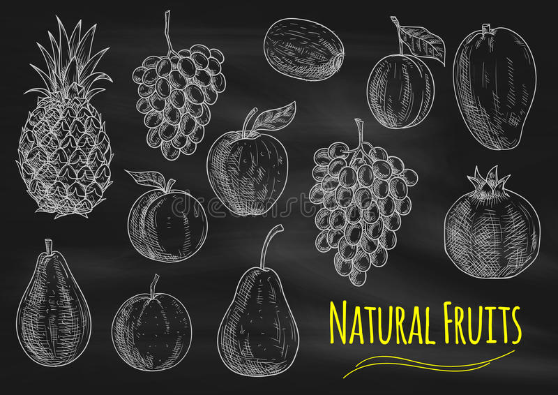 De natuurlijke vruchten pictogrammen van de krijtschets op bord royalty-vrije illustratie