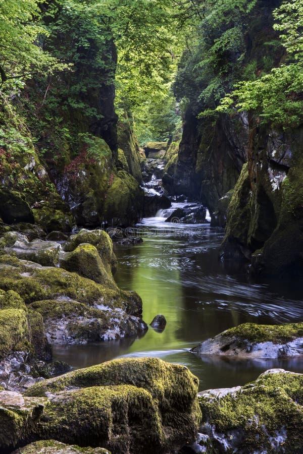 De Nauwe vallei van de fee Betws-y-coëducatie-, Wales royalty-vrije stock afbeelding