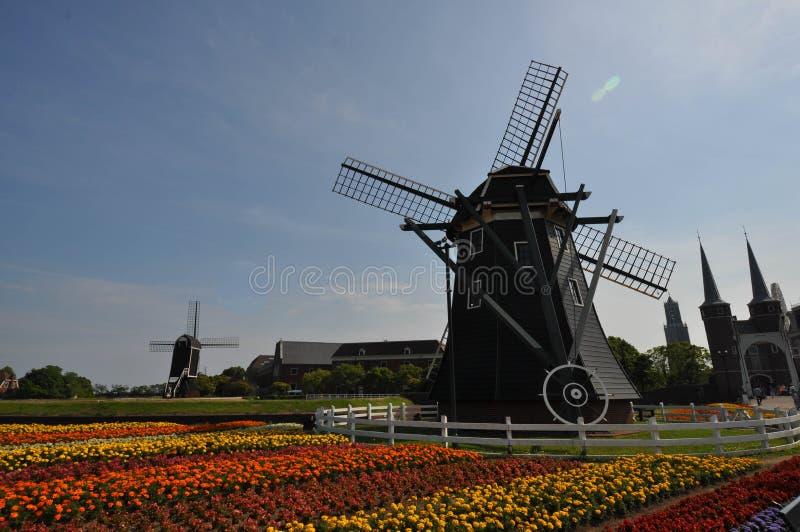 De Nederlandse stijlwind maalt huis royalty-vrije stock foto's