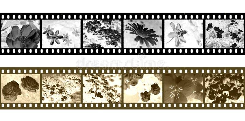 De negatieven van de filmstrip vector illustratie