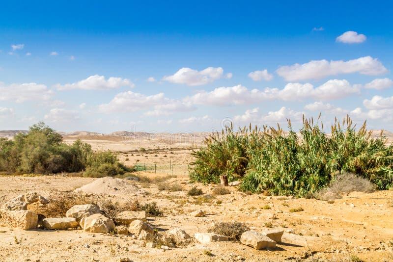 De Negev-Woestijn royalty-vrije stock foto