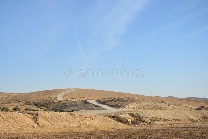 De Negev-Woestijn, Israël stock afbeelding