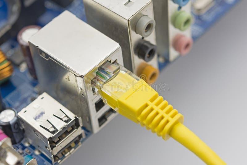 De netwerkkabel wordt verbonden met computer royalty-vrije stock afbeelding