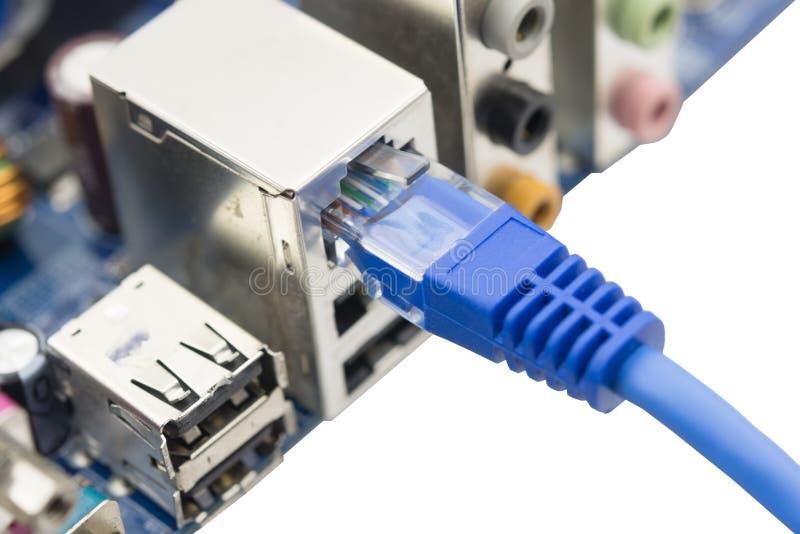 De netwerkkabel wordt verbonden met computer stock fotografie
