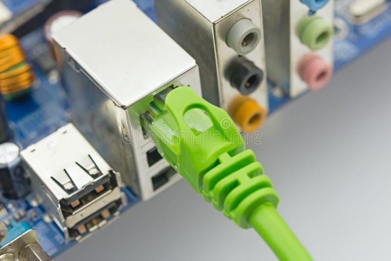 De netwerkkabel wordt verbonden met computer stock afbeelding