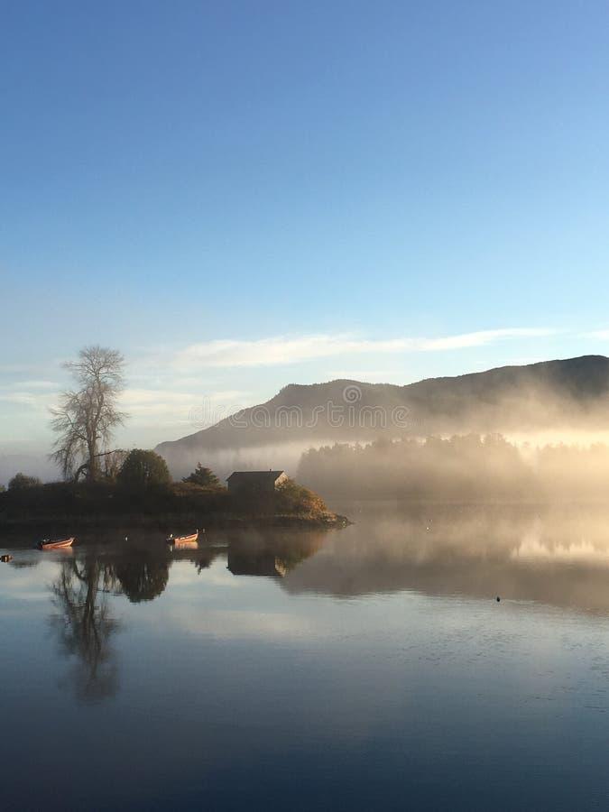 De nevelige ochtend van Alaska royalty-vrije stock fotografie