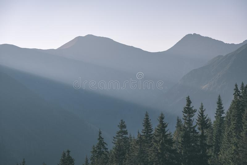 de nevelige zonsopgang in Slowaakse Tatra-bergen met lichte stegen in mist over de donkere bosherfst in wandeling sleept - uitste stock foto