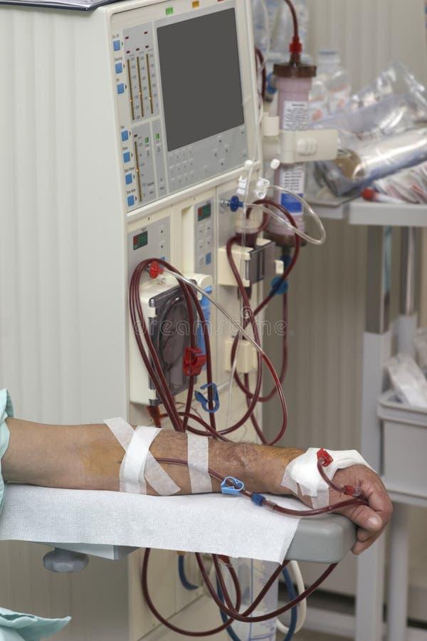 De nier van de de gezondheidszorggeneeskunde van de dialyse royalty-vrije stock foto