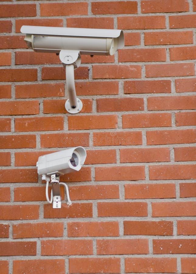 De nokken van de veiligheid stock afbeeldingen
