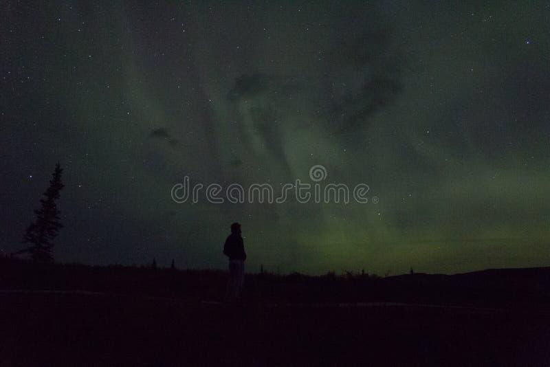 De noordelijke lichten arcoss blacked hemel van het leven Van Alaska omhoog starend bij de sterren Noordelijke lichten over de zw royalty-vrije stock afbeeldingen
