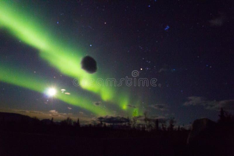 De noordelijke lichten arcoss blacked hemel van het leven Van Alaska omhoog starend bij de sterren Noordelijke lichten over de zw stock fotografie