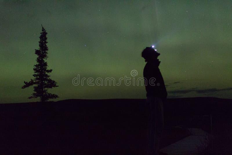 De noordelijke lichten arcoss blacked hemel van het leven Van Alaska omhoog starend bij de sterren Noordelijke lichten over de zw stock afbeelding