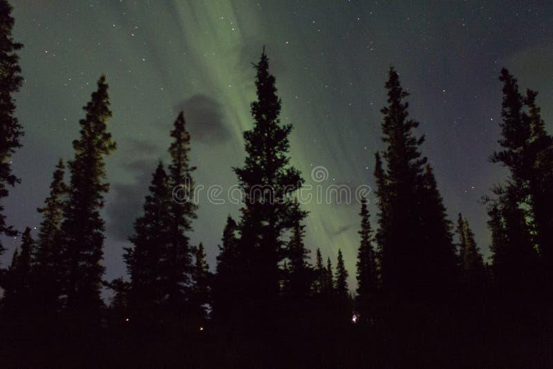 De noordelijke lichten arcoss blacked hemel van het leven Van Alaska omhoog starend bij de sterren Noordelijke lichten over de zw royalty-vrije stock foto